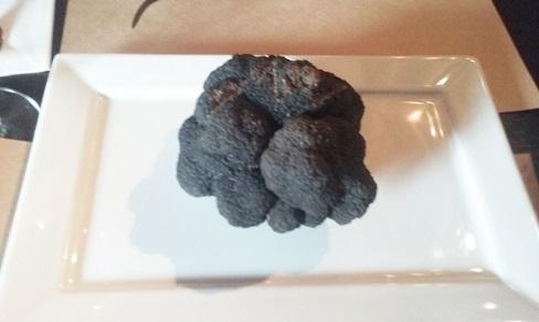Trufa negra-Tuber melanosporum da A.T.Chile