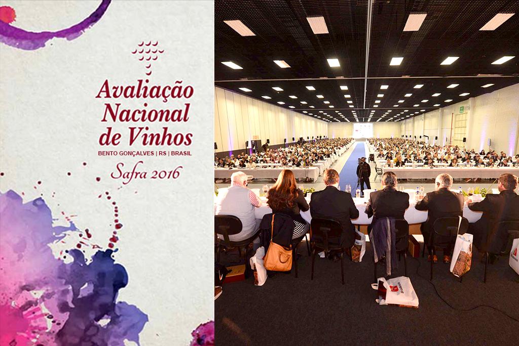 Visão Geral da Platéia na 24ª Avaliação Nacional de Vinhos