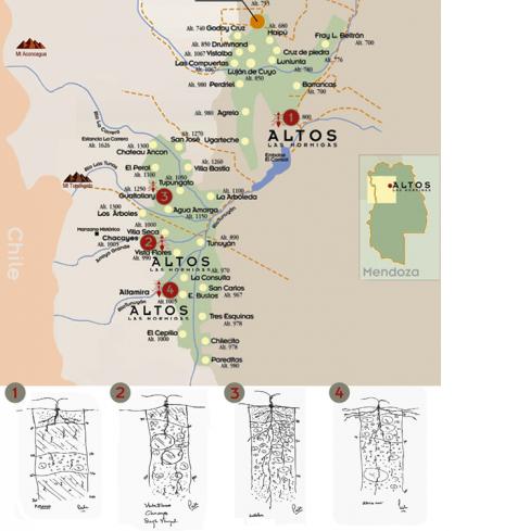 Mapa dos terrroirs Altos Las Hormigas