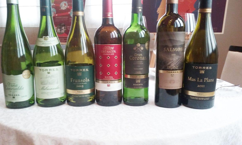 alguns-dos-vinhos-da-miguel-torres