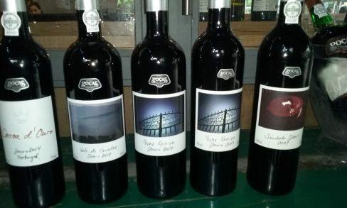 Linha Douro Poças de vinhos tranquilos