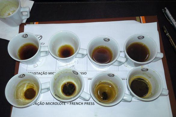 Degustação dos microlotes Onix nos processos espresso e french press