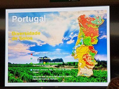 Portugal-Descubra a diferença